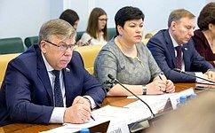 Комитет СФ посоциальной политике обсудил совершенствование законодательства всфере физической культуры испорта