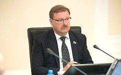 Профильный Комитет СФ обсудил реализацию Концепции государственной политики всфере содействия международному развитию