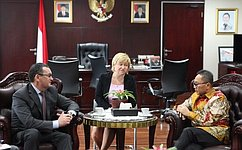 Делегация Совета Федерации находится софициальным визитом вРеспублике Индонезия