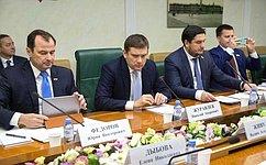 Ход реализации нацпроекта «Малое исреднее предпринимательство» рассмотрели вСовете Федерации