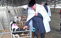 А. Михайлов посетил сельскохозяйственное предприятие ипровел прием граждан вКурской области
