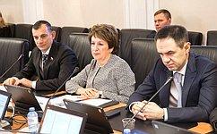 Комитет СФ поРегламенту иорганизации парламентской деятельности поддержал законопроект, расширяющий использование национальной платежной системы