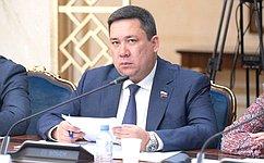 В. Полетаев: Совет Федерации уделяет особое внимание вопросам противодействия домашнему насилию