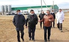 С. Михайлов: Необходимо расширить меры поддержки сельхозпредприятий кролиководческой отрасли