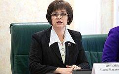 Внедрение новых цифровых технологий вшколах недолжно стать дополнительным бременем для региональных бюджетов— Е.Попова