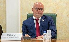 А. Клишас: Законопроекты оштрафах зафейки иоскорбления вИнтернете соответствуют международному праву