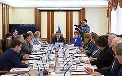 Профильный Комитет СФ обсудил ход реализации госпрограммы поразвитию Северного Кавказа