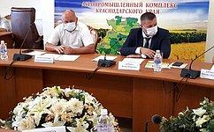 А. Кондратенко: Закон оселекции исеменоводстве— основополагающий документ для аграрной Кубани
