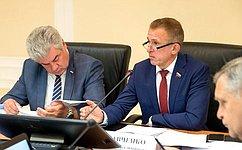ВСовете Федерации обсудили вопросы законодательного регулирования деятельности авиации ДОСААФ