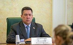 В. Полетаев провел «круглый стол», посвященный совершенствованию системы принудительного исполнения судебных актов