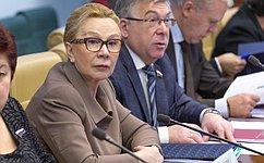 Комитет СФ посоциальной политике поддержал закон обувеличении минимального размера оплаты труда