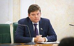 Н.Журавлев: Уаудиторов иаудируемых лиц должен быть один регулятор