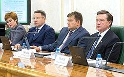 Сбалансированность бюджета Чукотки обсудил Комитет СФ побюджету ифинансовым рынкам