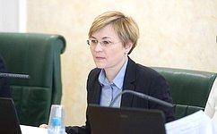 Л.Бокова: Временная комиссия СФ поразвитию информационного общества предлагает проводить вшколах Единый урок парламентаризма