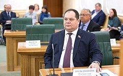 Сроки ожидания материнского капитала значительно сократят– сенатор Р.Гольдштейн