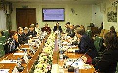 ВСовете Федерации обсудили концепцию закона омолодежи игосударственной молодежной политике вРФ