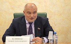 А. Клишас: Затронутые вПослании Президента вопросы демонстрируют последовательную реализацию принципов социального государства