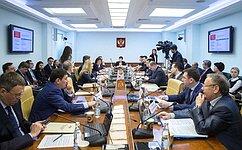 Комитет СФ посоциальной политике обсудил проблемы всфере электронного здравоохранения