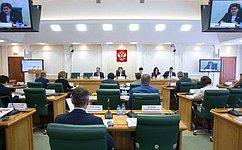 Создание законодательства для регулирования информационных отношений становится для СФ одной изприоритетных задач— Г.Карелова