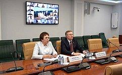 Е. Бибикова провела вебинар для Палаты молодых законодателей при Совете Федерации