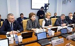 Министр труда исоциальной защиты РФ принял участие врасширенном заседании профильного Комитета Совета Федерации