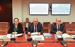 Законодательное регулирование мероприятий попредупреждению иликвидации разливов нефти рассмотрели вСовете Федерации