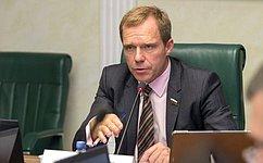Комитет СФ поэкономической политике поддержал уточнение механизмов противоаварийного управления электроэнергетической системой