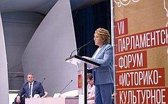 В. Матвиенко: Поддержка исторического облика российских городов– одна изпервостепенных государственных задач