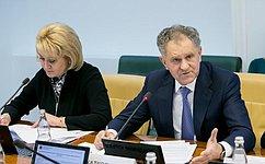 Профильный Комитет СФ обсудил вопросы создания врегионах новых мест вобщеобразовательных организациях