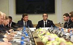 Состоялось заседание рабочей группы Совета законодателей ЦФО повзаимодействию сПалатой молодых законодателей при СФ