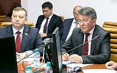 В. Озеров: Проведение массовых спортивных мероприятий требует четкой системы обеспечения безопасности