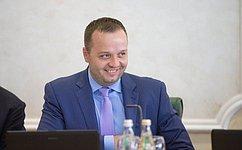 К. Добрынин: Имеет смысл пригласить назаседание Совета Федерации Уполномоченного поправам ребенка