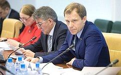 А. Кутепов: Совет Федерации уделяет большое внимание парламентскому контролю заисполнением вступивших всилу законов