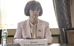 Е. Попова: Необходимо сосредоточиться налучших практиках поддержки многодетных семей