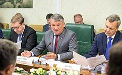 Ю. Воробьев: ВСовете Федерации считают необходимым проверить «закон овалежнике» региональной практикой