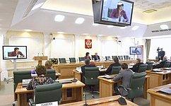 Сенаторы обсудили практику применения федерального избирательного законодательства нарегиональных иместных выборах