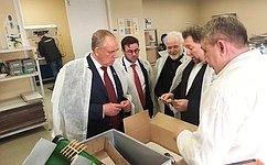 С. Митин провел вБелгороде выездное совещание повопросам развития отрасли отечественных ветеринарных препаратов