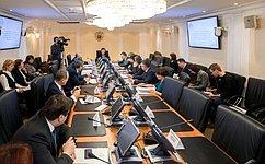 ВКомитете СФ побюджету ифинансовым рынкам обсудили вопросы правового регулирования деятельности самозанятых граждан