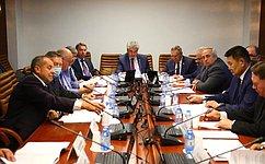 Сенаторы обсудили угрозы, которые представляет для нашей страны агрессивная «мягкая сила» Запада