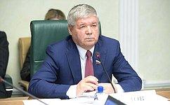 Развитие производственной инфраструктуры наЧукотке обсудил Комитет СФ поэкономической политике