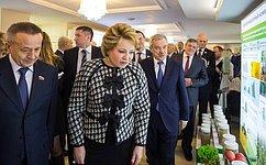 Дни Белгородской области прошли вСовете Федерации