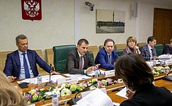 ВСФ обсудили вопросы подготовки законопроекта омолодежи игосударственной молодежной политике вРоссии