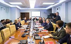 Нарасширенном заседании Комитета СФ посоциальной политике выступил Министр спорта Российской Федерации П.Колобков