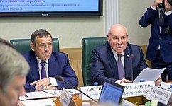 Развитие инфраструктурных проектов вМарий Эл обсудил Комитет СФ поэкономической политике