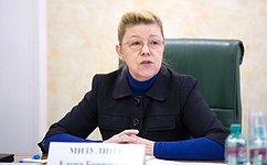 Е.Мизулина: Воглаву угла Президент ставит стабильность испокойствие внутри страны