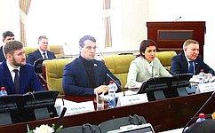 Экспертный совет пофизической культуре испорту при Комитете СФ посоциальной политике обсудил развитие зимних видов спорта