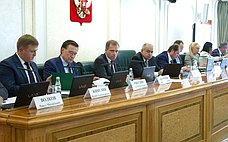 ВСовете Федерации состоялись парламентские слушания оходе решения экономических задач, определенных «майским» Указом Президента