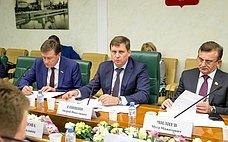 Развитие электронной торговли всфере регламентированных закупок рассмотрели вСовете Федерации