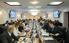 С. Горячева: Законопроект огосударственном имуниципальном контроле будет ключевым для реформы контрольно-надзорной функции