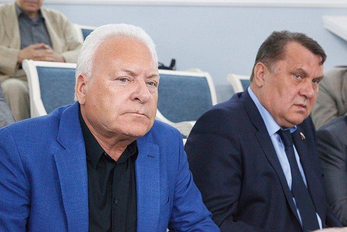 17-06 Комиссия СФ по мониторингу ситуации на Украине 10